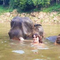 Swimming with elephants, Thailand