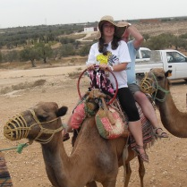 Camel trail in Tunisia